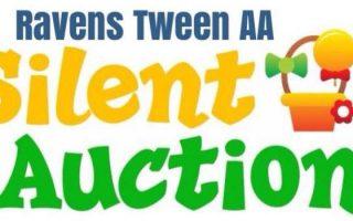 tween-aa-silent-auction-fundraiser